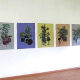 Nelson Barrera (CUBA), Acrylic Drawings