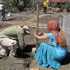 Intern duties: gardening