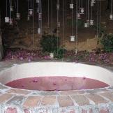 Alyssa Crane installation. Water, Bougambillia flower natural pigment.