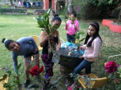 Workshop: Recycled Plastic Planters